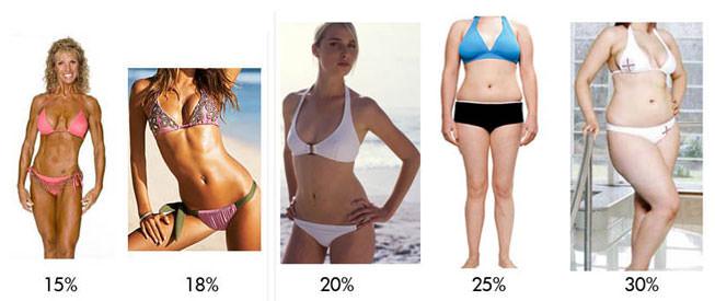 body-fat-percentage-picture.jpg